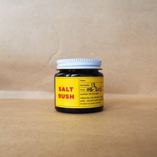 Mabu Mabu Saltbush